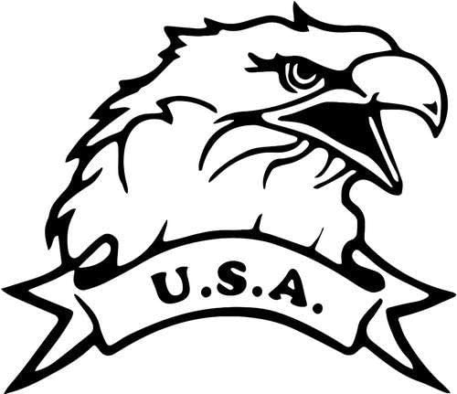USA Bald Eagle - Sticker Graphic - Auto, Wall, Laptop, Cell, Truck Sticker for Windows, Cars, Trucks (Pink)