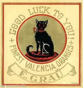 MAGNET Valencia Spain Black Cat Good Luckto You Orange Citrus Fruit Crate Magnet Print