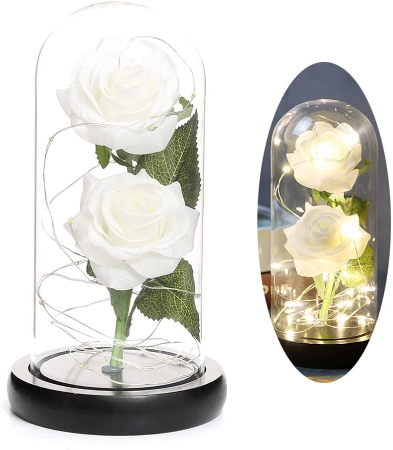 Hankyky Rose Lamp, Real Enchanted Rose in Glass Dome, Preserved Rose Flower Night Light Eternal Flowers Rose Gift for Her on Thanksgiving Day, Birthday