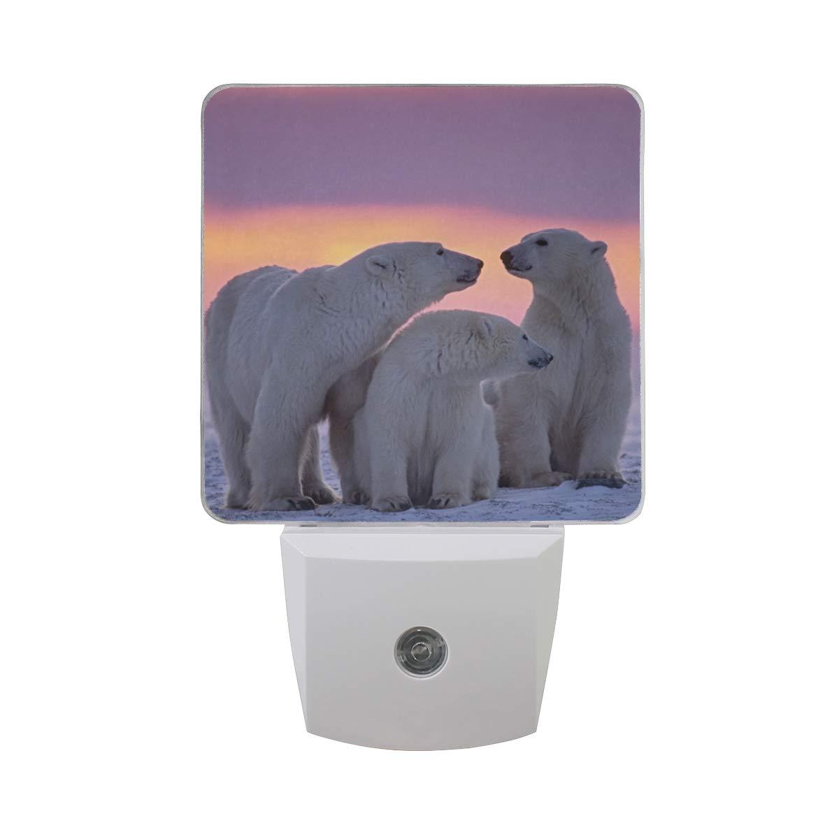 KUWT LED Night Light Polar Bear Animal Plug in Night Lamp Light with Auto Senor Dusk to Dawn for Bedroom Bathroom Hallway Stairways, 2 Pack