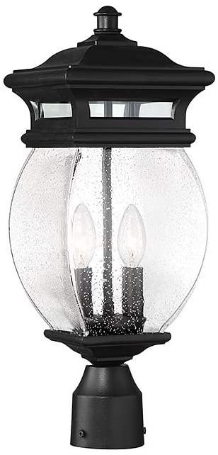Savoy House 5-8097-BK Seven Oaks 2-Light Post Lantern (8