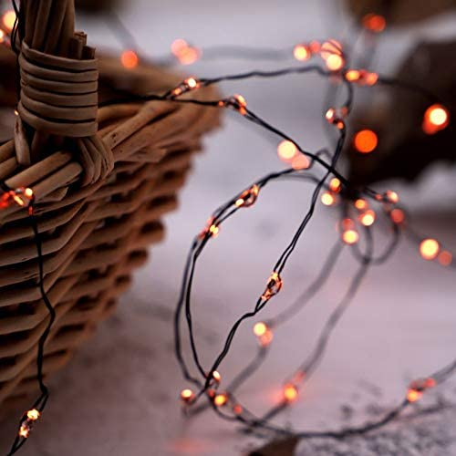 MENGNAN Orange firefly Fairy String Lights Battery Operated 10ft 40LEDs with Remote and timer for Thanksgiving Harvest Halloween Christmas Birthday Gift Autumn Indoor Party Home Bedroom Bar Decoratio