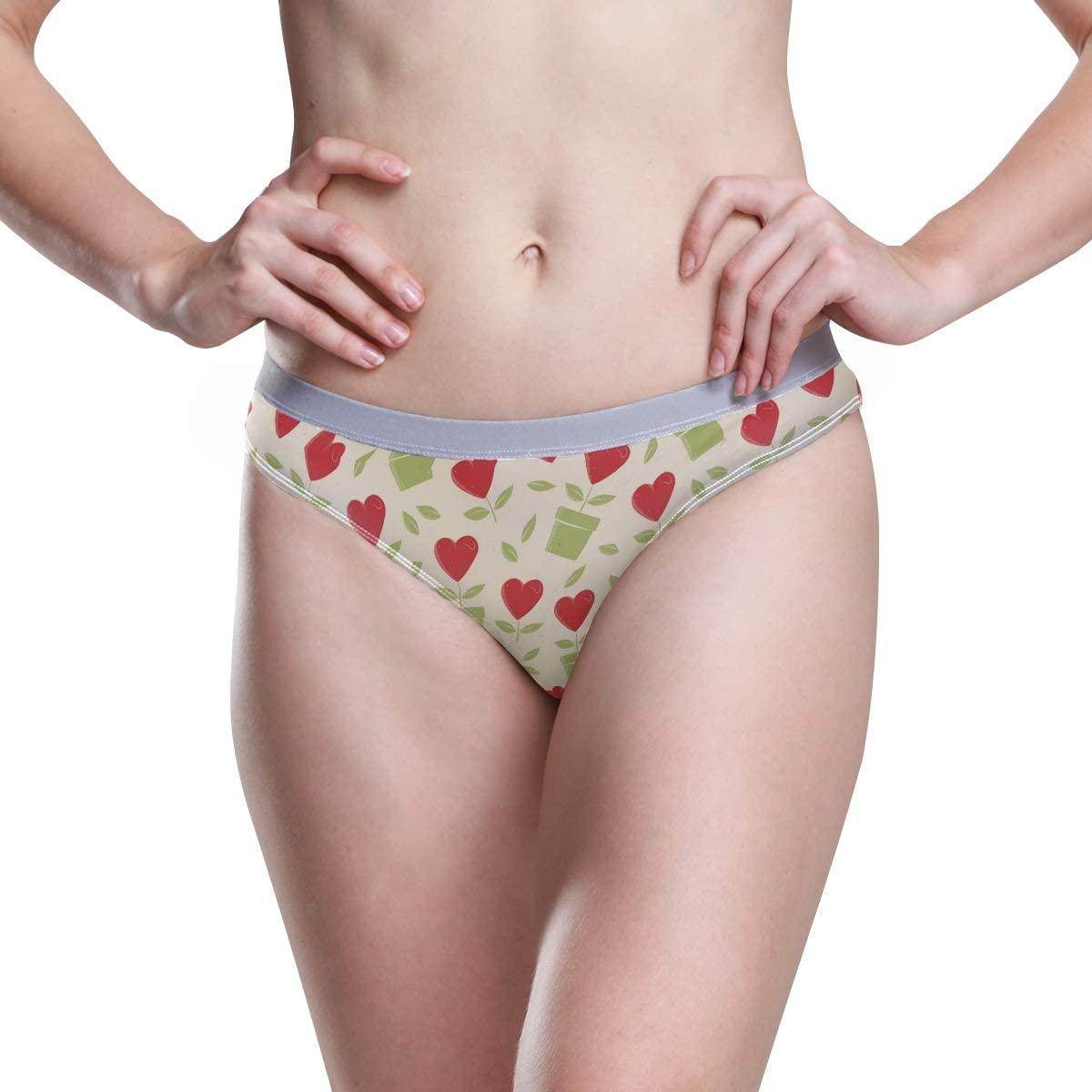 Women Underwear Bikini Vintage Retro Valentine's Day Pattern 3D Printed Sexy Low Waist Panties Hipster Comfy Briefs S