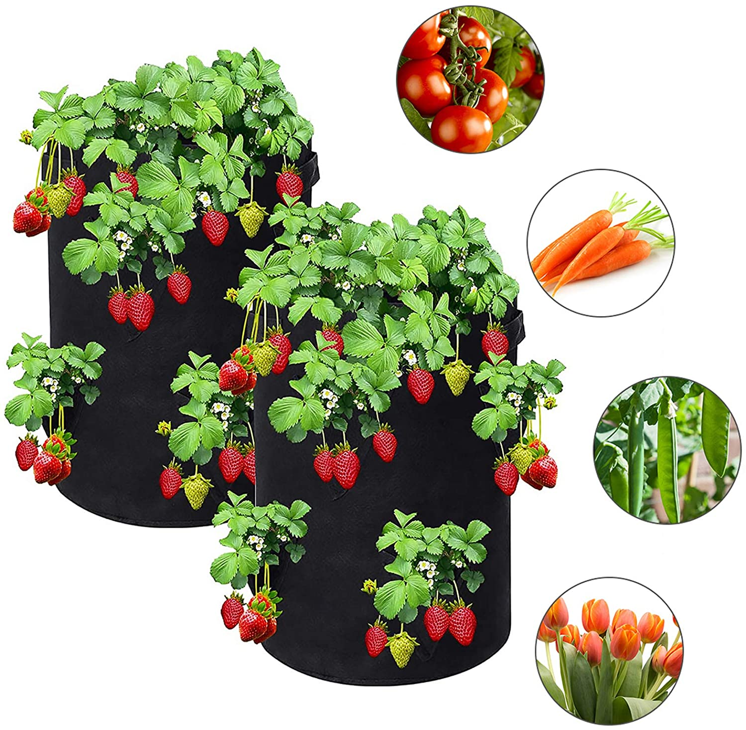 Strawberry Grow Bags, 2-Pack 10 Gallon Strawberry Plant Bag with 5 Side Planting Pockets, Breathable Non-Woven Fabric Plant Container with Handles for Balcony Courtyard Gardening