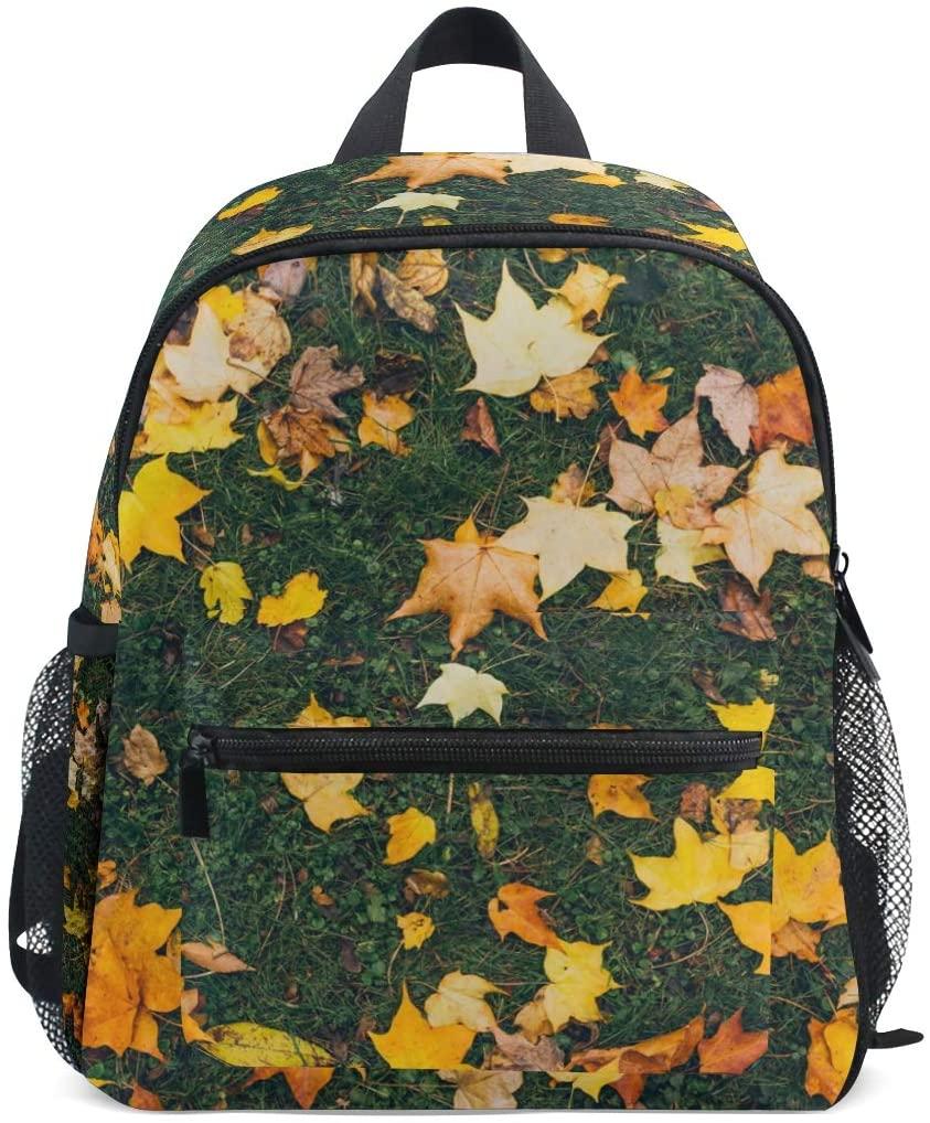 MOFEIYUE Kids Backpack Autumn Leaves Pattern School Bag Kindergarten Toddler Preschool Backpack for Boy Girls Children