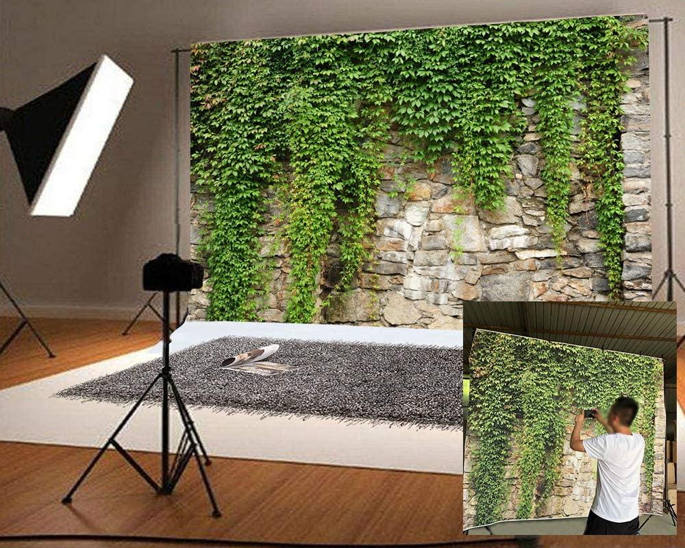 Laeacco 10x8ft Rustic Rock Wall Green Ivy Scenic Backdrop Vinyl Spring Scenic Background Child Adult Portrait Shoot Landscape Wallpaper Event Activities Video Studio Props