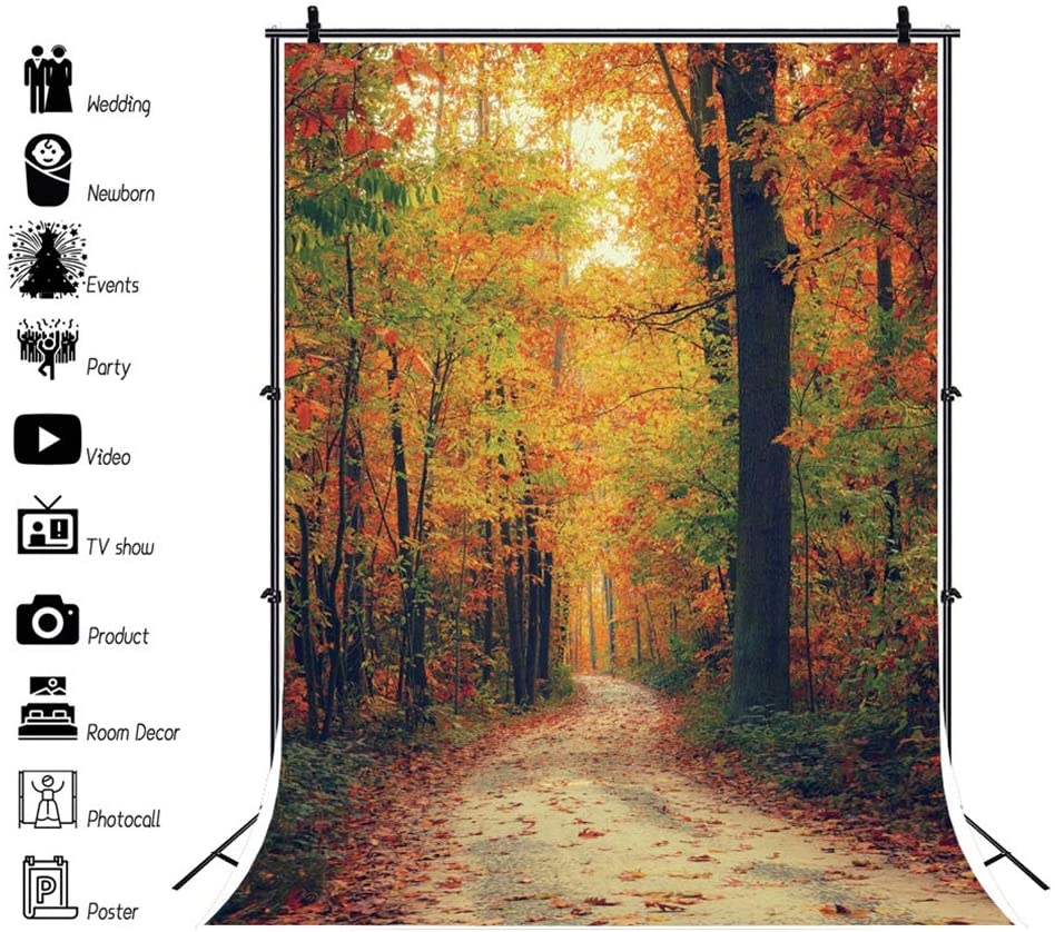DaShan 10x12ft Fall Forest Trees Backdrop Fall Wedding Autumn Fall Foliage Party Autumn Park Fall Leaves Photography Background Fall Theme Birthday Party Outdoor Travel Family YouTube Photo Props