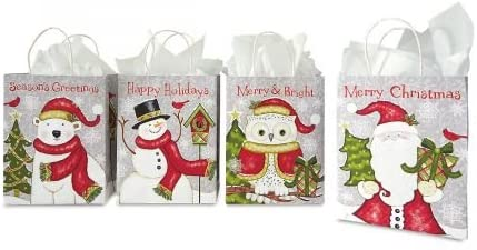 Rustic Holiday Kraft Gift Bags- Set of 13 Assorted Christmas Gift Bags