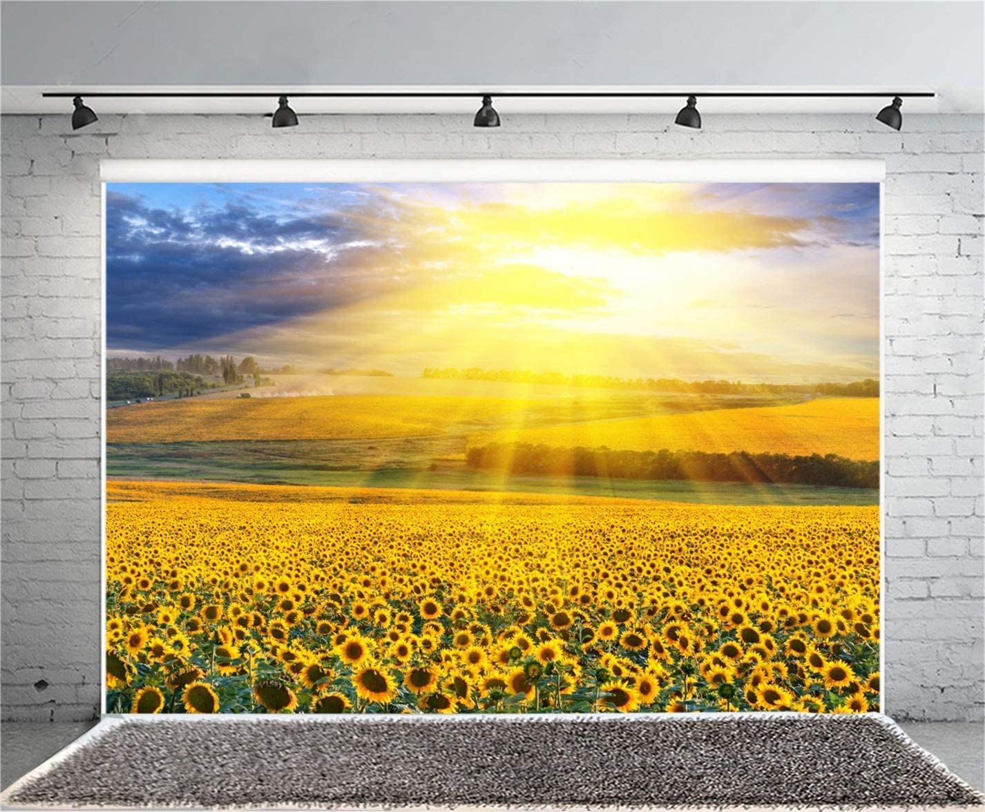 CSFOTO 10x8ft Sunflower Field Backdrop Sunshine Sunflowers Blossom Field Country Scenery Background for Photography Beautiful Village Rural Party Photo Wallpaper