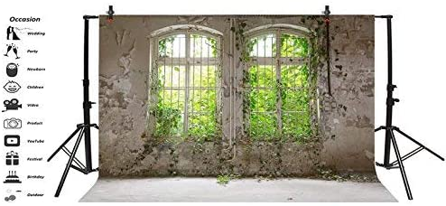 Baocicco 10x7ft Interior Wedding Photography Background Abandoned Building Shabby Wall Window View of Green Plants Background Empty Old Rural Room Discarded Factory Warehouse