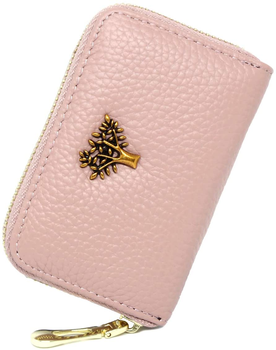 imeetu RFID Blocking Credit Card Holder, Leather Zipper Small Wallet Card Case for Women,S(Pink)