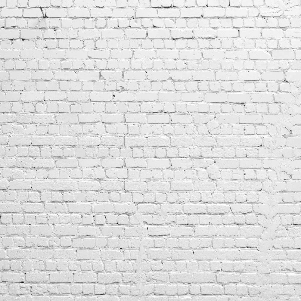 HUAYI 5x5ft White Brick Wall Photography Backdrop Vinyl Background Portraits Photo Booth D-2504