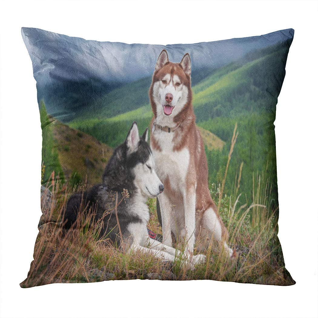 Docady Square Pillowcase Beautiful Husky Dogs Walk in The Mountains Siberian Mountain Landscape Decorative Cushion Cover Printing Home Sofa Living Room Bedroom