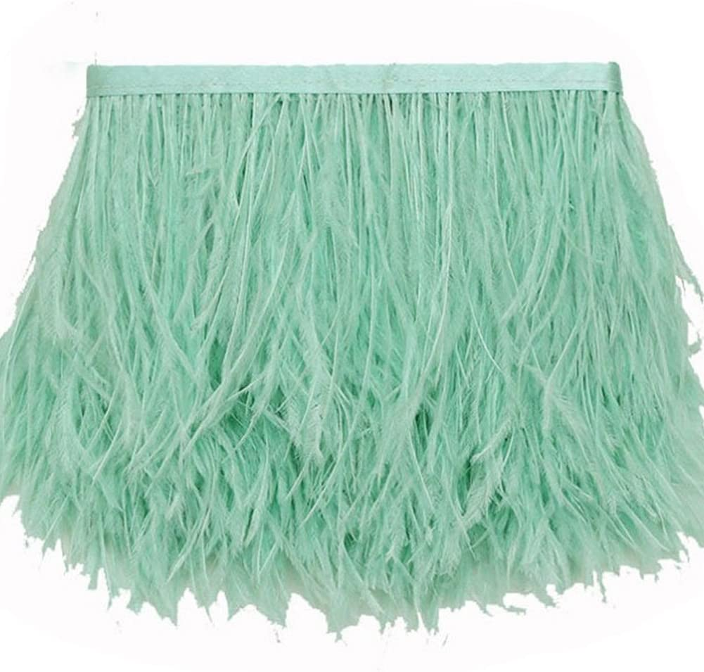 MELADY 10 Yards Fashion Dress Sewing Crafts Costumes Decoration Ostrich Feathers Trims Fringe with Satin Ribbon Tape (Pale-Green)