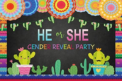 Baocicco 10x6.5ft Mexican Theme He or She Gender Reveal Party Backdrop May Cactus Colorful Stripes Photography Background Mexican Fiesta Cinco de Mayo Baby Shower Decoration Newborn Portrait Studio