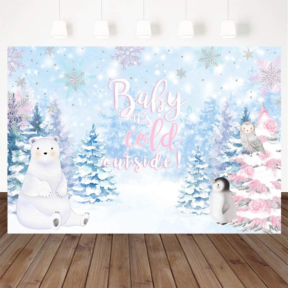 Avezano Winter Wonderland Baby Shower Backdrop, 7x5ft Vinyl Winter Baby Shower Party Decorations Winter Baby Shower Banner Photography Background