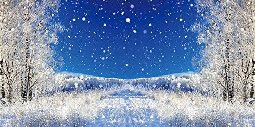 Baocicco 10x5ft Winter Wonderland Backdrop Winter Snowfields Snowdrift Frozen Trees Blue Sky Photography Background Merry Christmas New Year Party Winter Holiday Outdoor Party Kids Adults Photo
