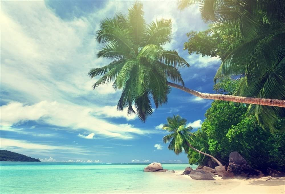 LFEEY 10x7ft Tropical Beach Backdrop Photos Sunshine Blue Sky Wedding Summer Party Events Photography Background Video Drapes Wallpaper Photo Studio Props