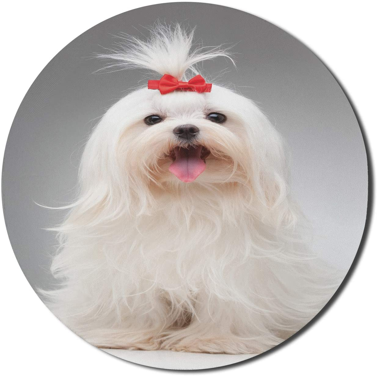 Lunarable Bow Mouse Pad for Computers, Posing Playful White Maltese Dog Breed with Tiny Red Hairpin Holding Updo Hair Image, Round Non-Slip Thick Rubber Modern Gaming Mousepad, 8