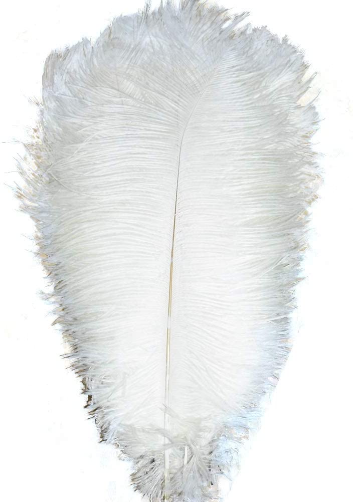 ADAMAI 100PCS Natural 9.8-11.8inch Ostrich Feathers Plume for Wedding Centerpieces Home Decoration (white)