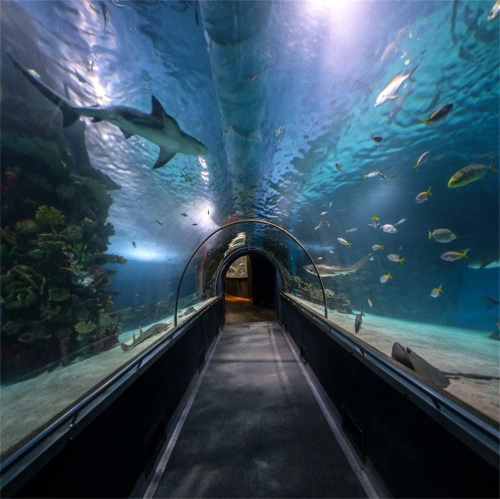 LFEEY 10x10ft Ocean Aquarium Tunnel Backdrop Large Seabed Oceanarium Hallway Underwater Shark Fishes Sea Water Photography Background Parties Events Photo Studio Props