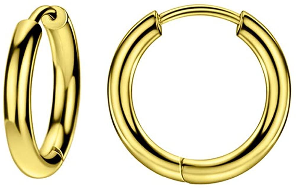 316L Surgical Steel Hinged Huggie Hoop Earrings for Women Men