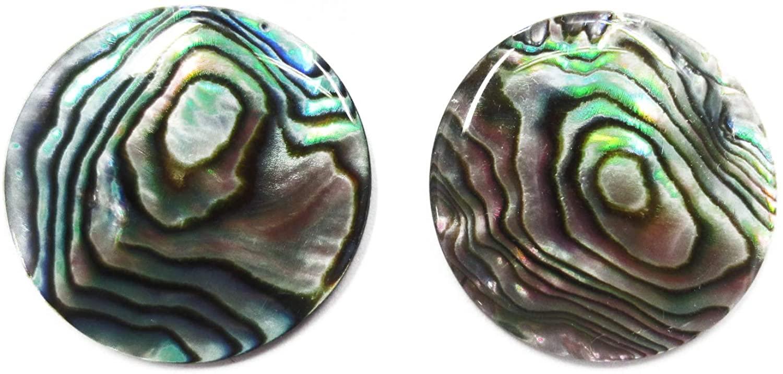 DaJ Lot of 10 10mm Paua Abalone Shell Round Calibrated Cabochon Cab Gemstone