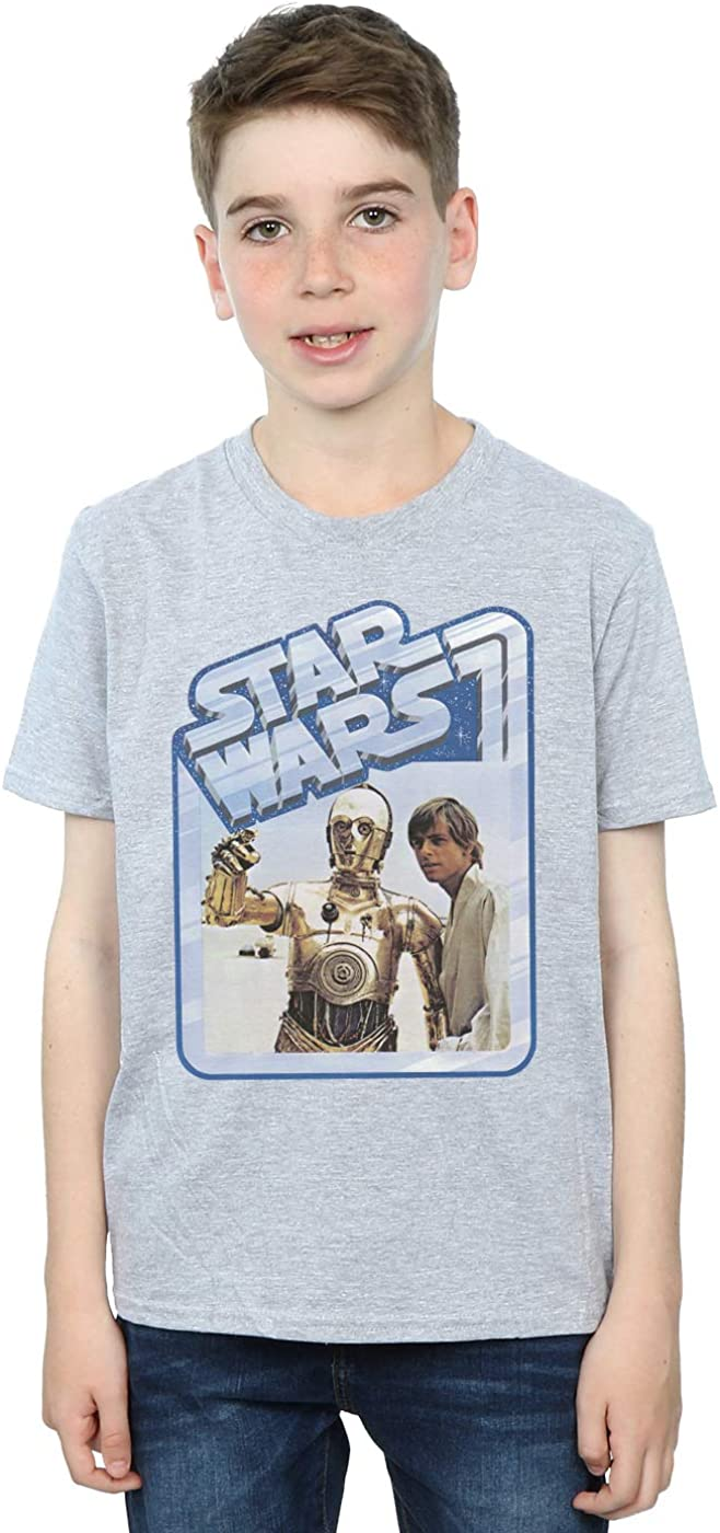 Star Wars Boys Luke Skywalker and C-3PO T-Shirt 5-6 Years Sport Grey