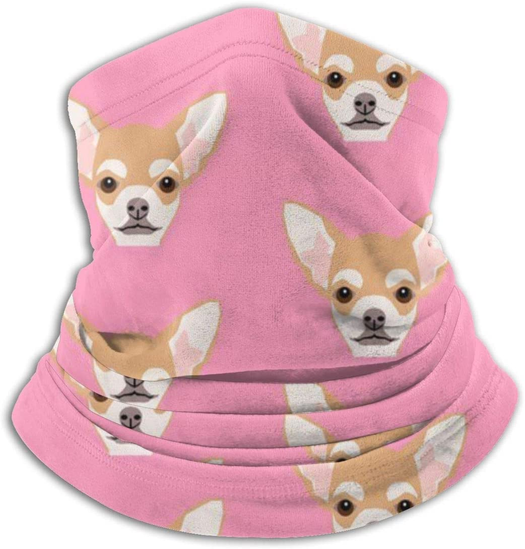 antfeagor Chihuahua Cute Dog Valentine 2020 for Women Men Dust Wind Sun Protection Seamless Bandana Face for Rave Festival Outdoor Running Tube Multifunctional Headwear