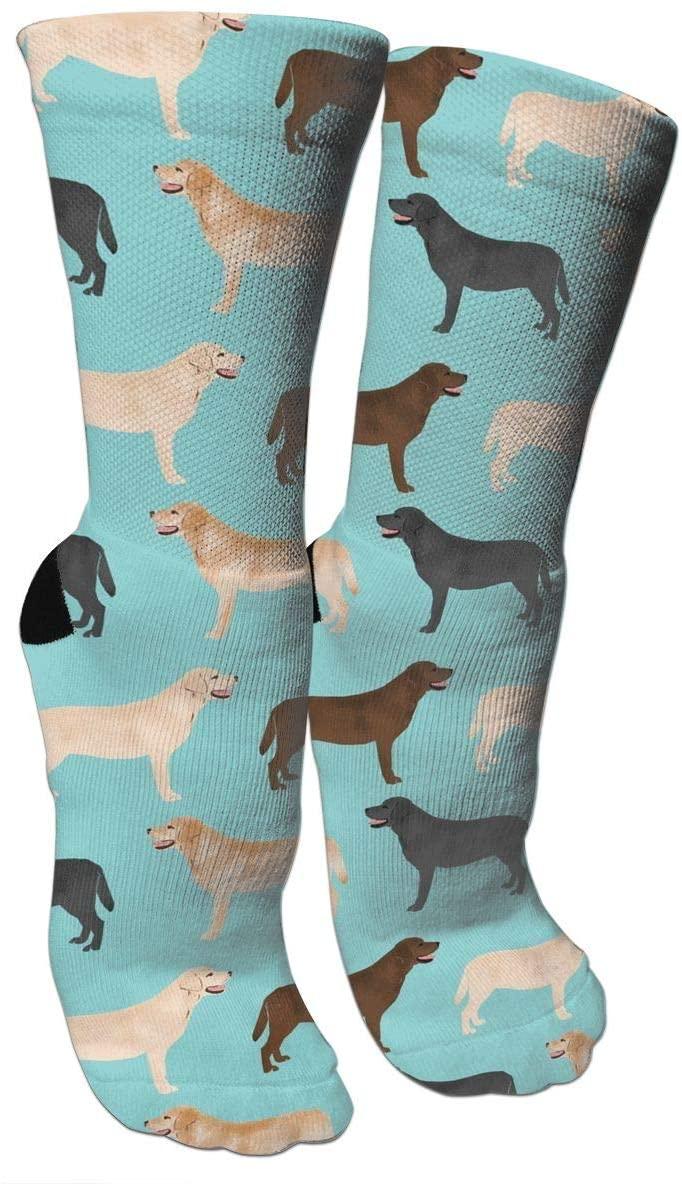 antspuent Cute Labradors Yellow Chocolate Black Lab Pet Dogs Compression Socks Unisex Fun Novelty Crazy Dress Crew Socks
