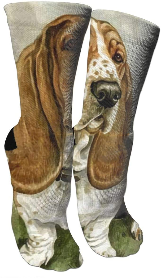 antspuent Basset Hound Compression Socks Unisex Fun Novelty Crazy Dress Crew Socks