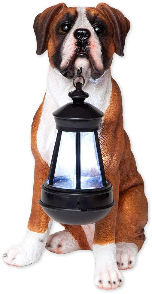 Bits and Pieces - Boxer Solar Lantern - Solar Powered Garden Lantern - Resin Dog Sculpture with LED Light - Outdoor Lighting and Décor