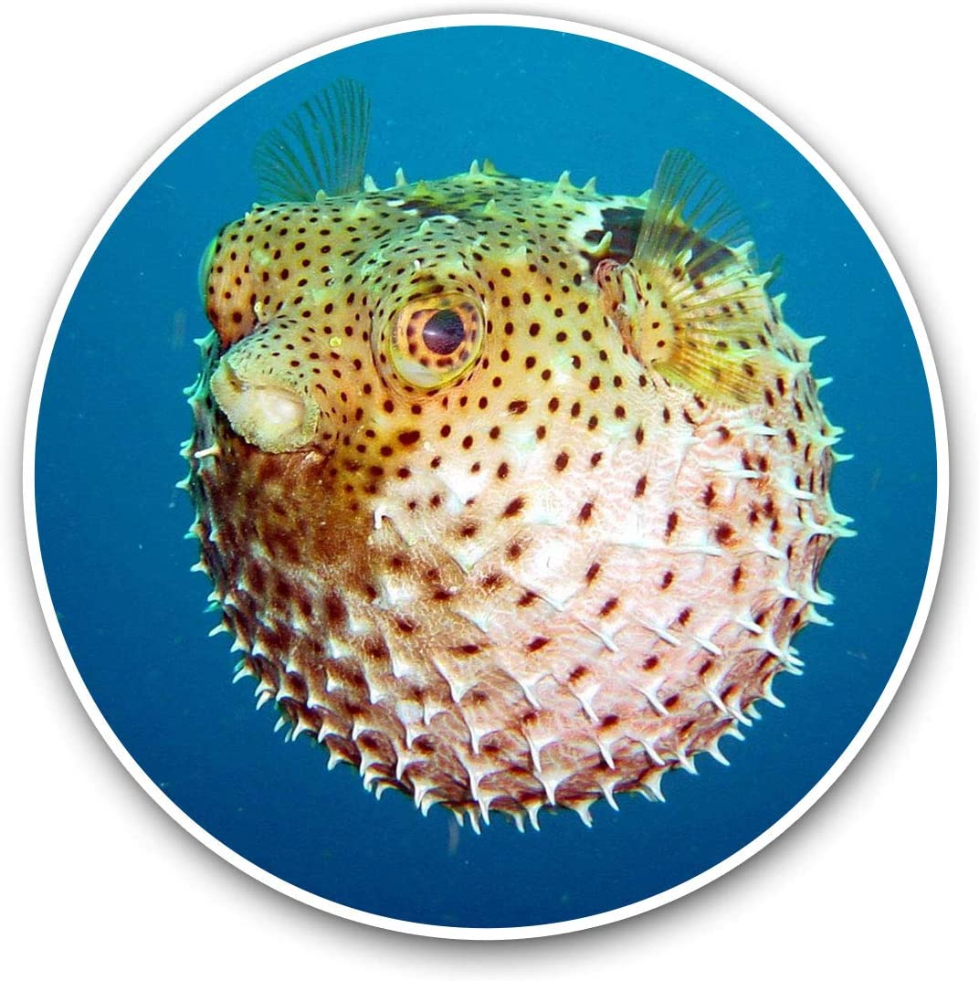 Awesome Vinyl Stickers (Set of 2) 10cm - Puffer Fish Ocean Sea Diver Diving Fun Decals for Laptops,Tablets,Luggage,Scrap Booking,Fridges,Cool Gift #8938