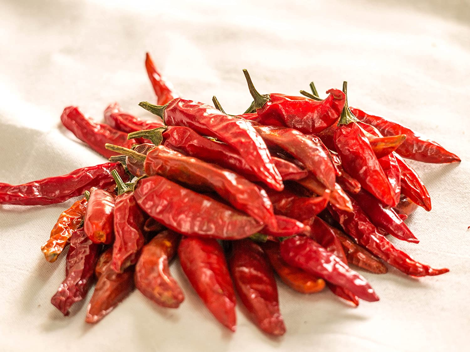 Nobility Dry Chillies 100g / 3.5oz - Dried Red Chili Pepper - Indian Extra Hot Red Chilli - [A+]