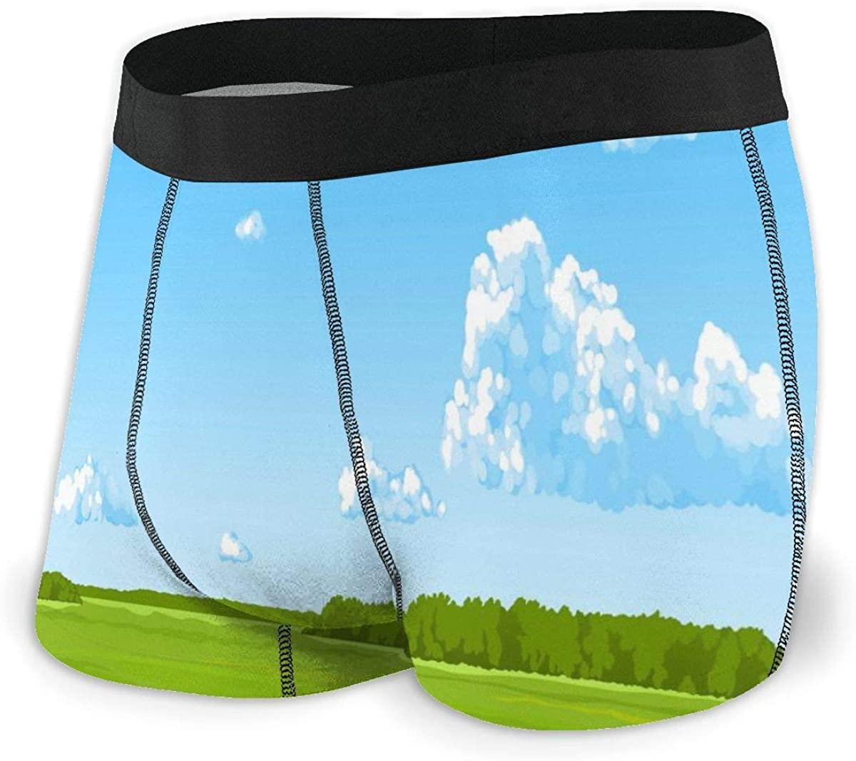 Randolph Wordsworth Mens Boxer Briefs Panorama The Summer Vector Breathable Underwear