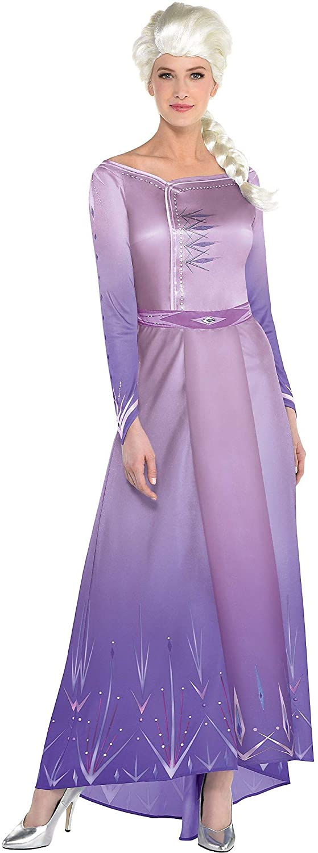 Party City Elsa Act 1 Halloween Costume for Women, Frozen 2, Includes Dress