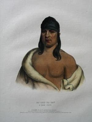 Pa-She-Pa-Haw, A Sauk Chief