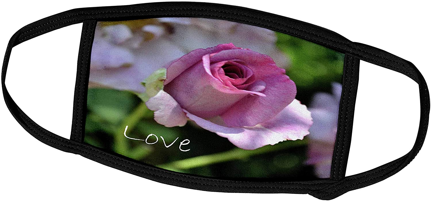 3dRose Love Pink Rose Flower Flowers Floral Photography - Face Covers (fc_30429_2)