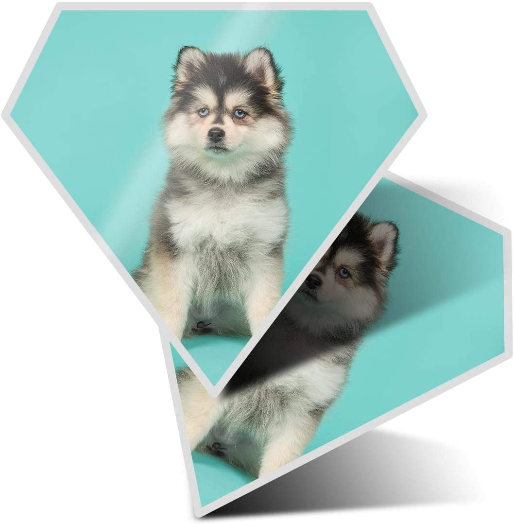 Awesome 2 x Diamond Stickers 7.5 cm - Pomsky Pomeranian Husky Puppy Fun Decals for Laptops,Tablets,Luggage,Scrap Booking,Fridges,Cool Gift #21424