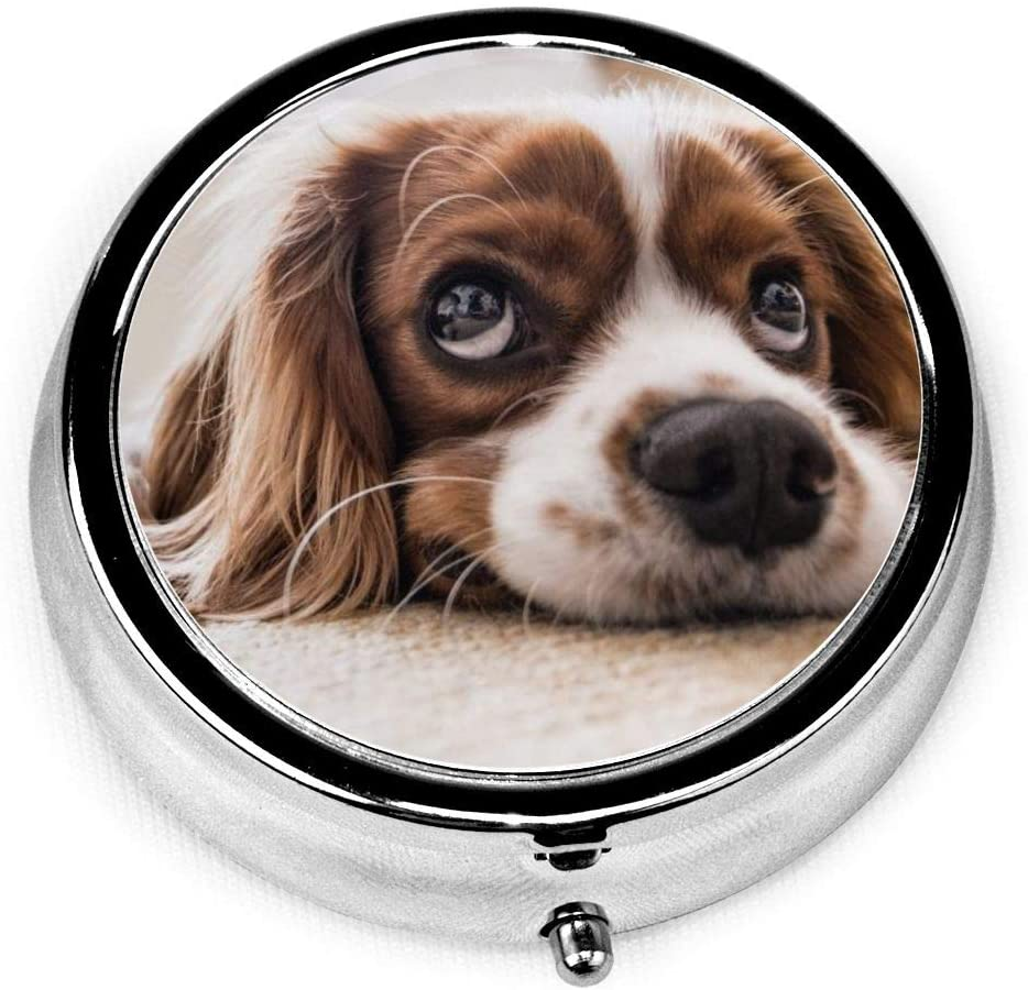 Daily Pill Organizer Springer Spaniel Dog Round Medicine Box Case Compact 3 Compartment Vitamins Tablet Holder Container Metal Portable for Daily Needs Travel Purse Pocket