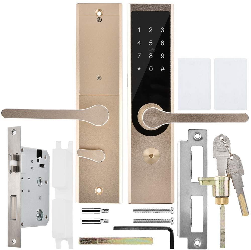 Delaman Smart Door Lock, A4 WiFi BT Cipher Remote Smart Door Lock Professional Door Lock System for Business Office Hotel Apartment