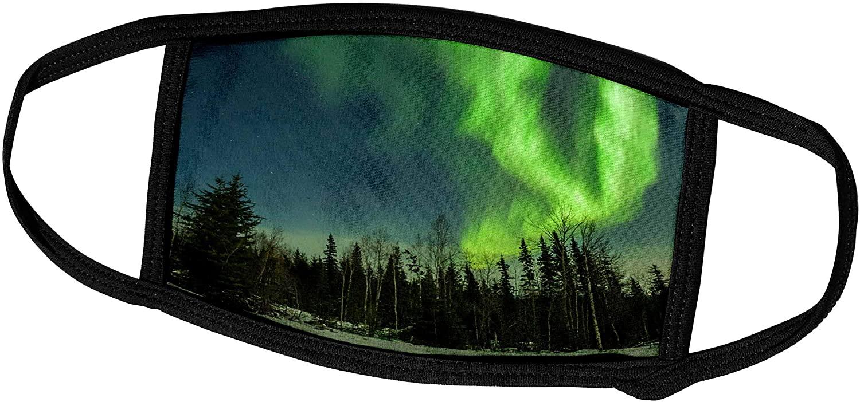 3dRose Danita Delimont - Alaska - Alaska. Aurora Borealis and Forest. - Face Covers (fc_229433_3)