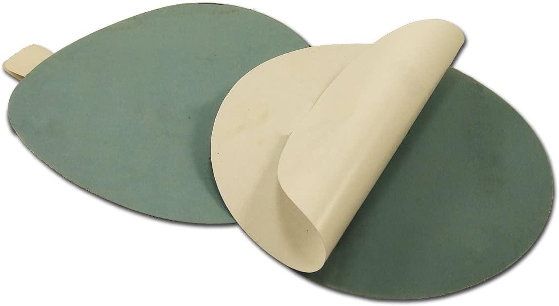 5 Inch 1500 Grit Adhesive back (PSA) Film Sanding Discs, 10-Pack
