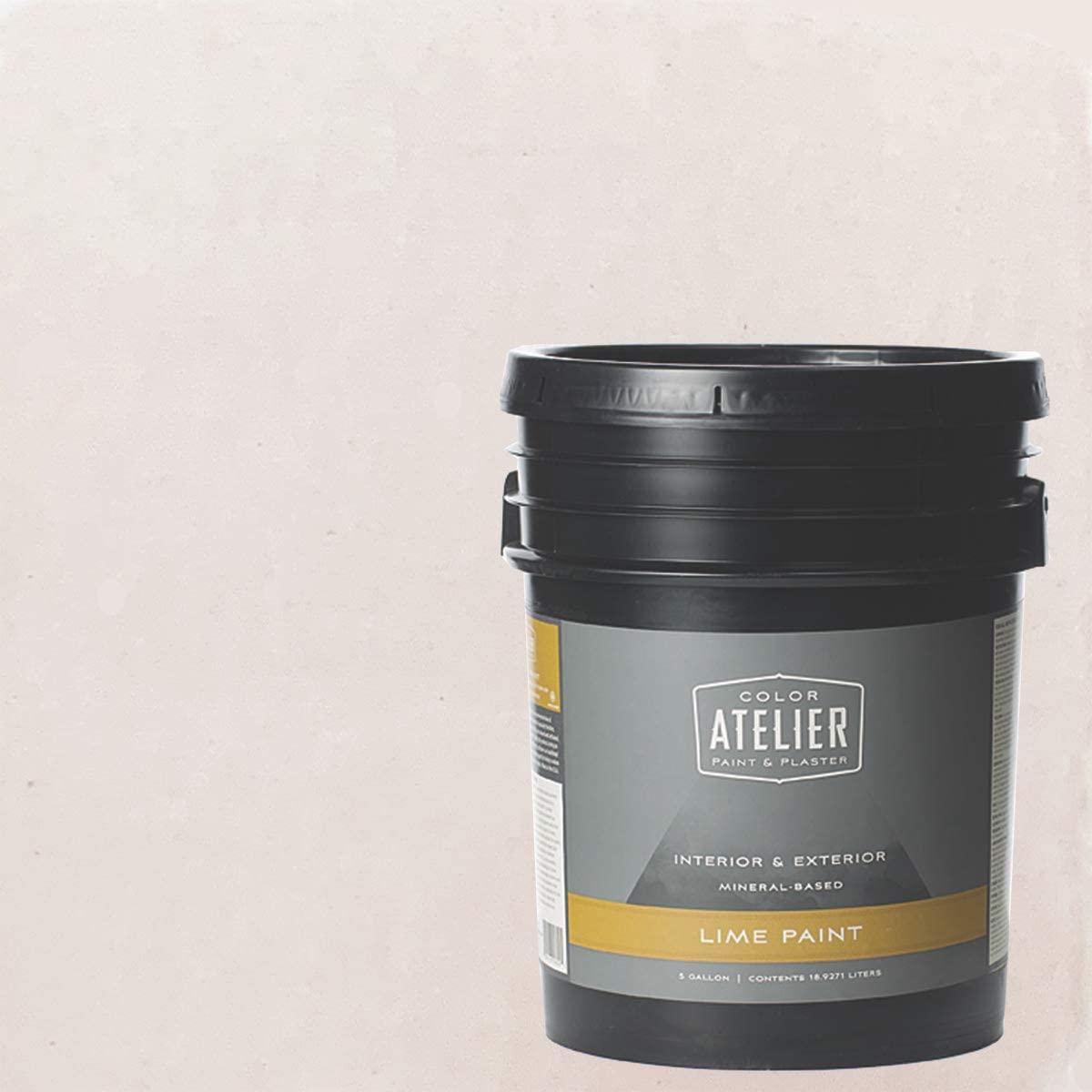 Color Atelier Lime Paint (5 Gallon, Rosy Mood)