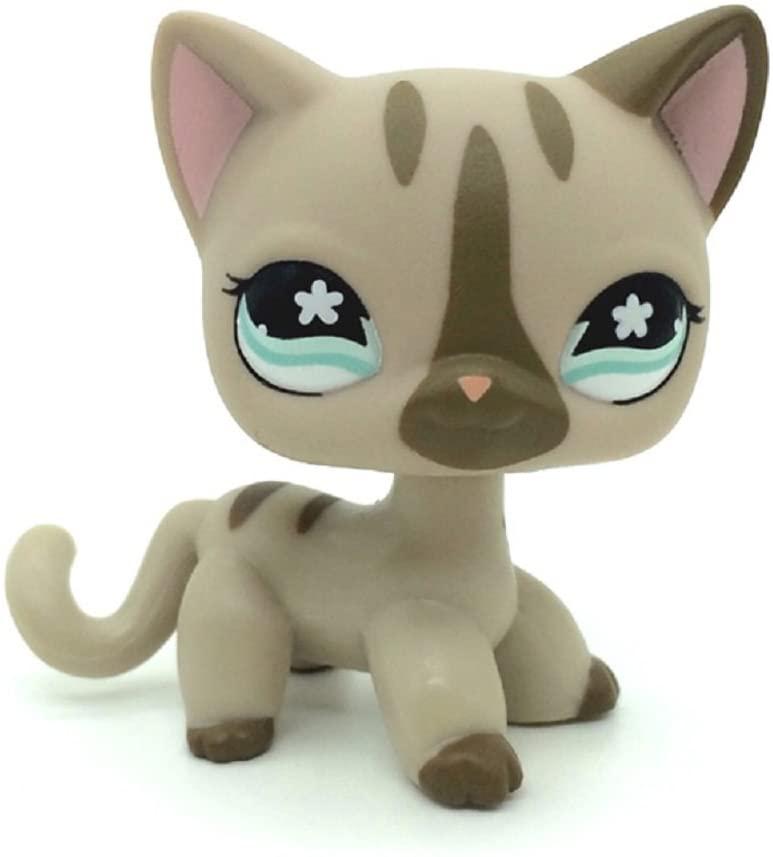 ZAD Gray Short Hair Cat Kitty Tan Blue Eyes LPSs #468