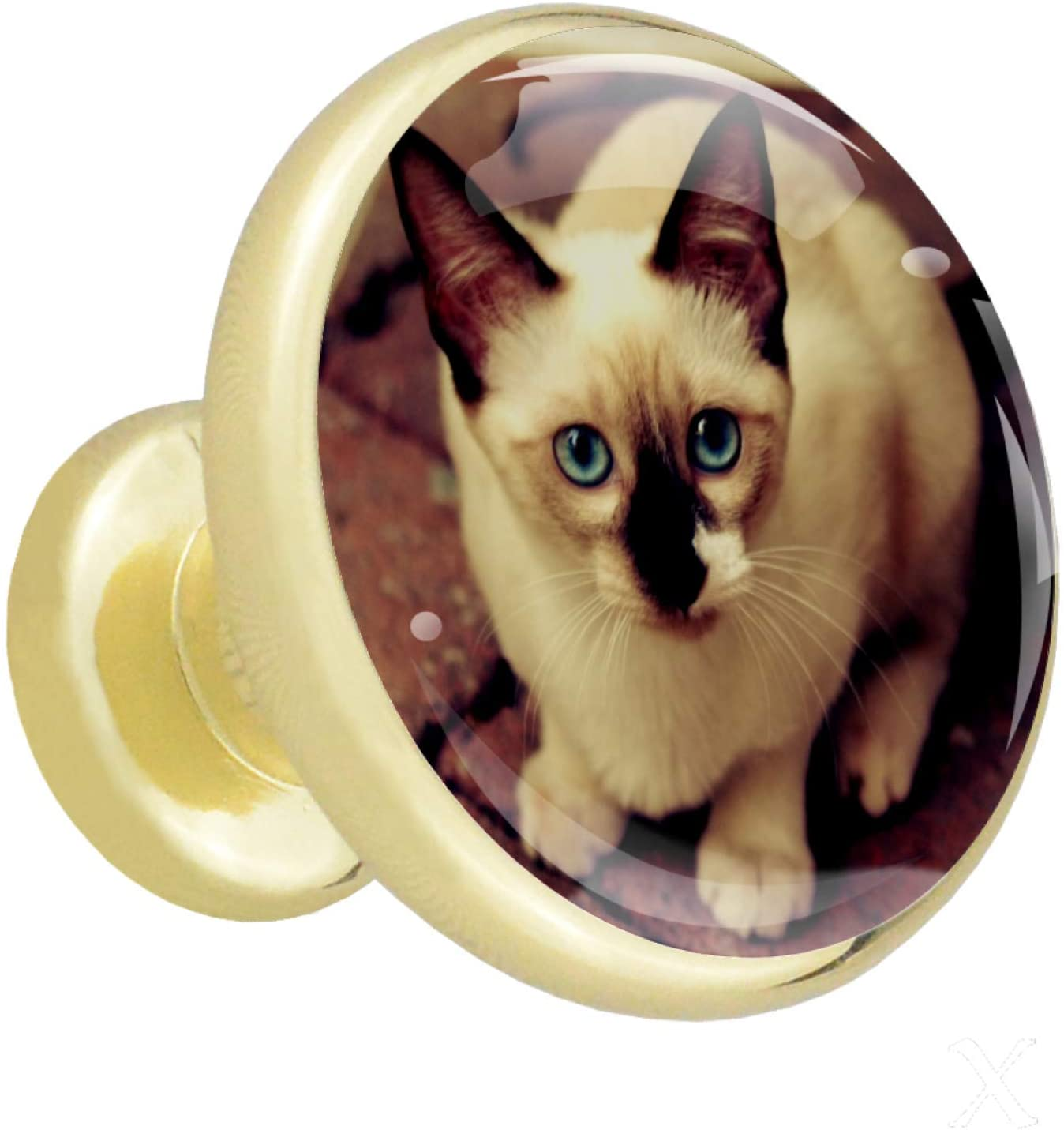 HadHfun Bathroom knobs Cute Kitten Drawer pulls Golden Champagne Round nightstands knobs for Room 4 Pack 1.26x1.18in