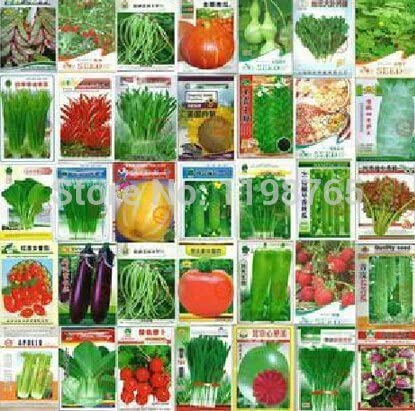 100pcs 100 Kinds Eggplant Carrot Cucumber Tomato Vegetable Seed Family Potted Balcony Garden