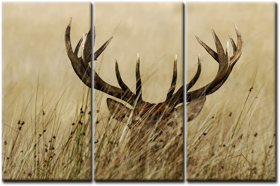 3 Panel Wall Art Deer Stag with Long Antler in The Bushes Painting The Picture Print On Canvas Animal Pictures for Home Decor Decoration Gift Piece (Stretched by Wooden Frame,Ready to Hang)