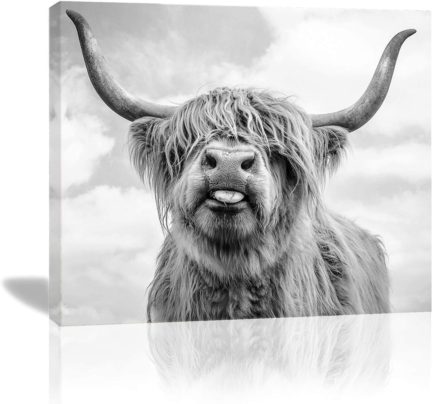 Vantboo Highland Cattle Cow Canvas Prints Wall Art Paintings Home Decor Artworks Pictures for Living Room Bedroom Bathroom Decoration Ready to Hang 16 X 20 Inches