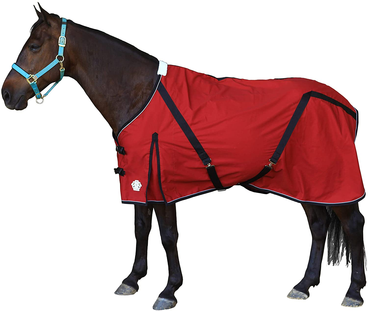 TEKE Deluxe Horse Canvas Sheet for Snug and Clean in Stable